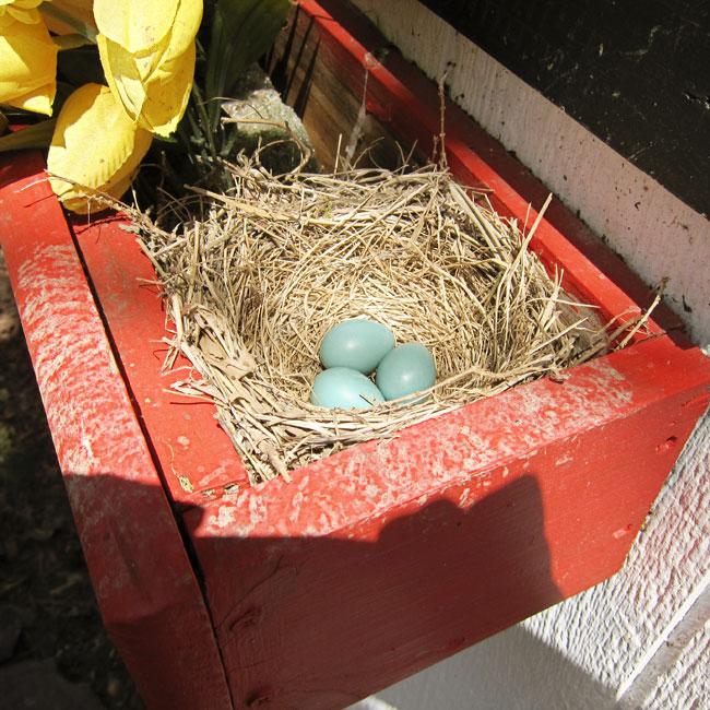three-eggs-web