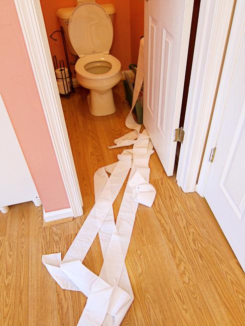 web toilet paper
