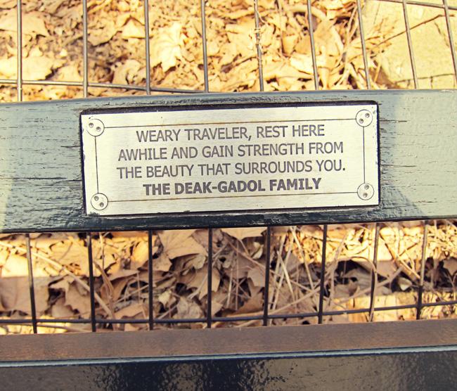 central park bench web