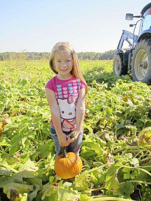 pumpkin-girl-web