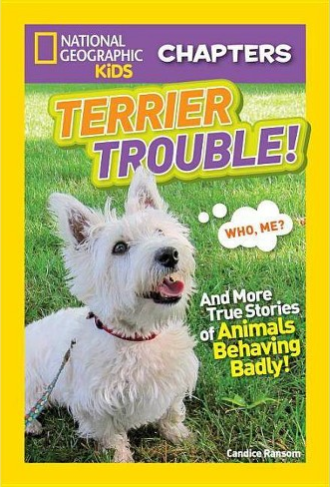Terrier Trouble