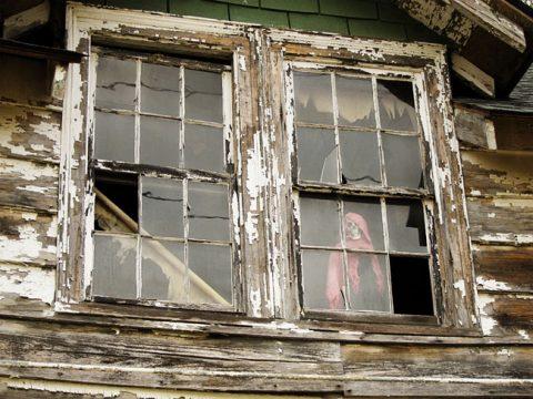 Skeleton Window - (c) Candice Ransom